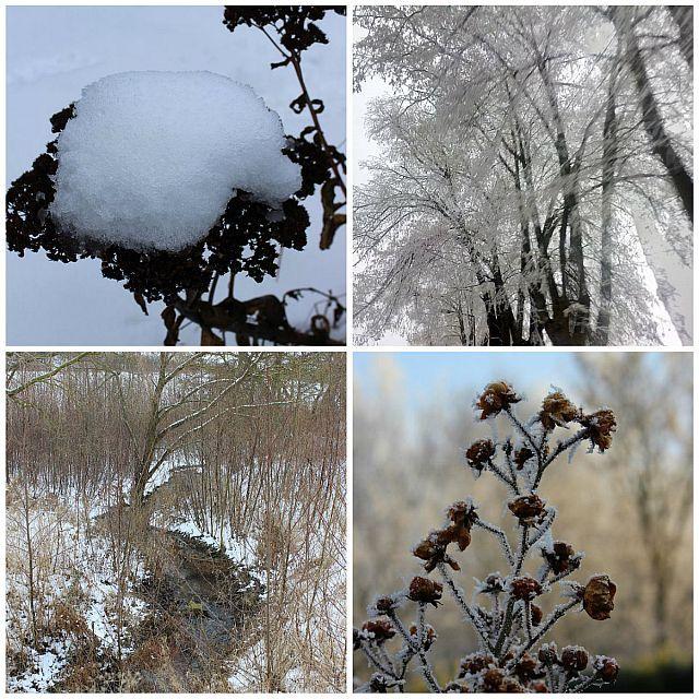 Collage Eis und Schnee