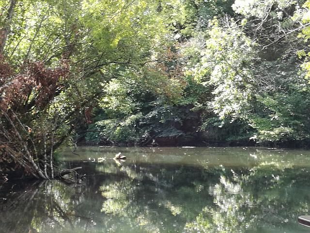 Fluss Dronne