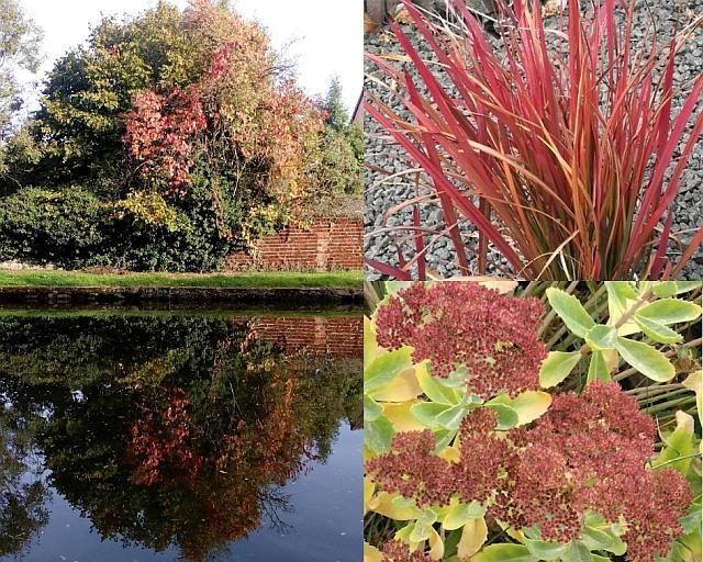 Der Herbst und die herbstlichen Rottöne